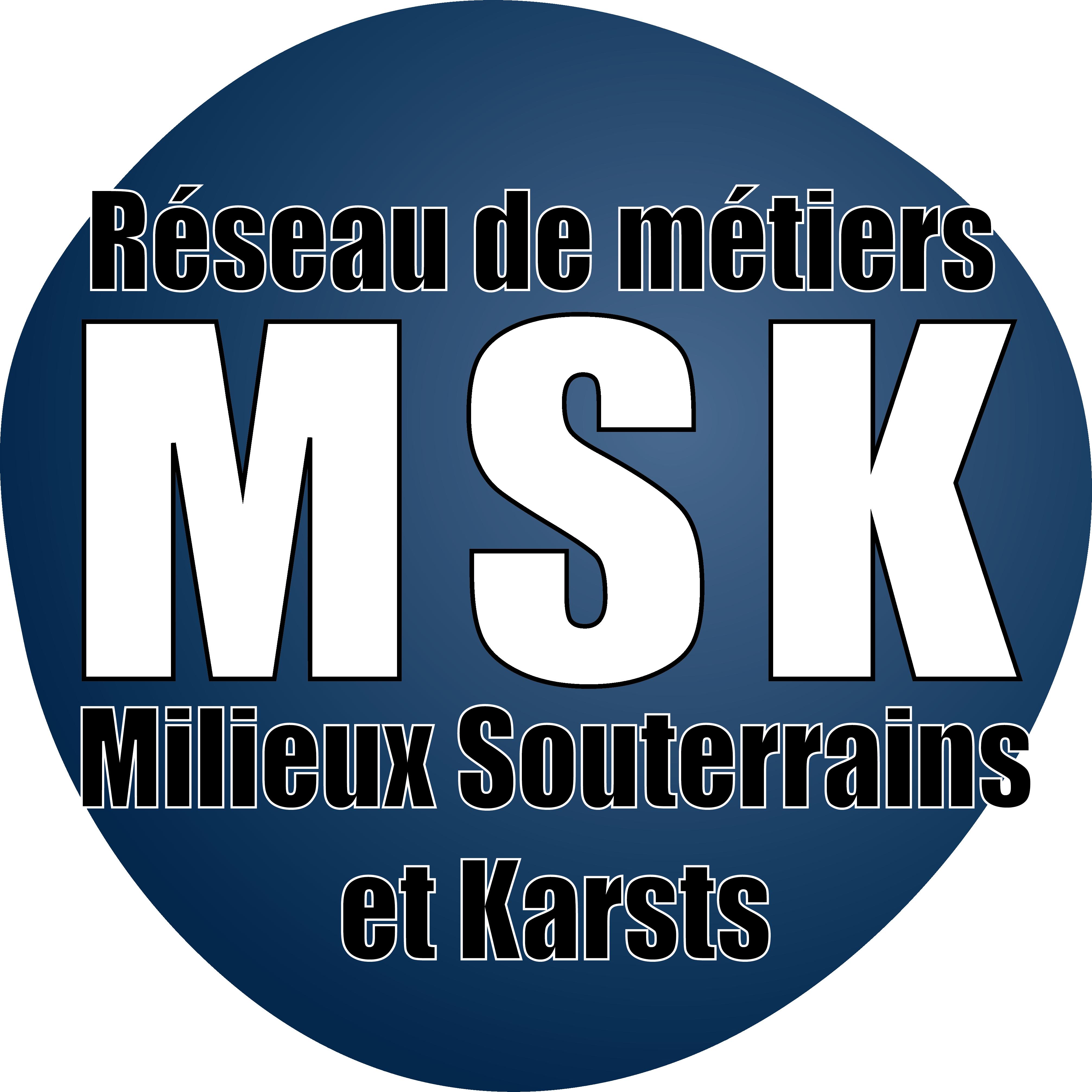 Réseau CNRS MSK